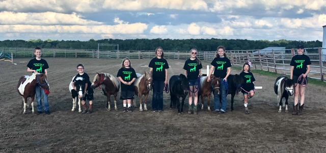 Mini-horse-show-Isanti-county-fair