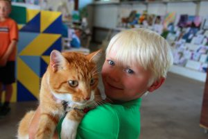 4h-little-boy-with-tiger-cat
