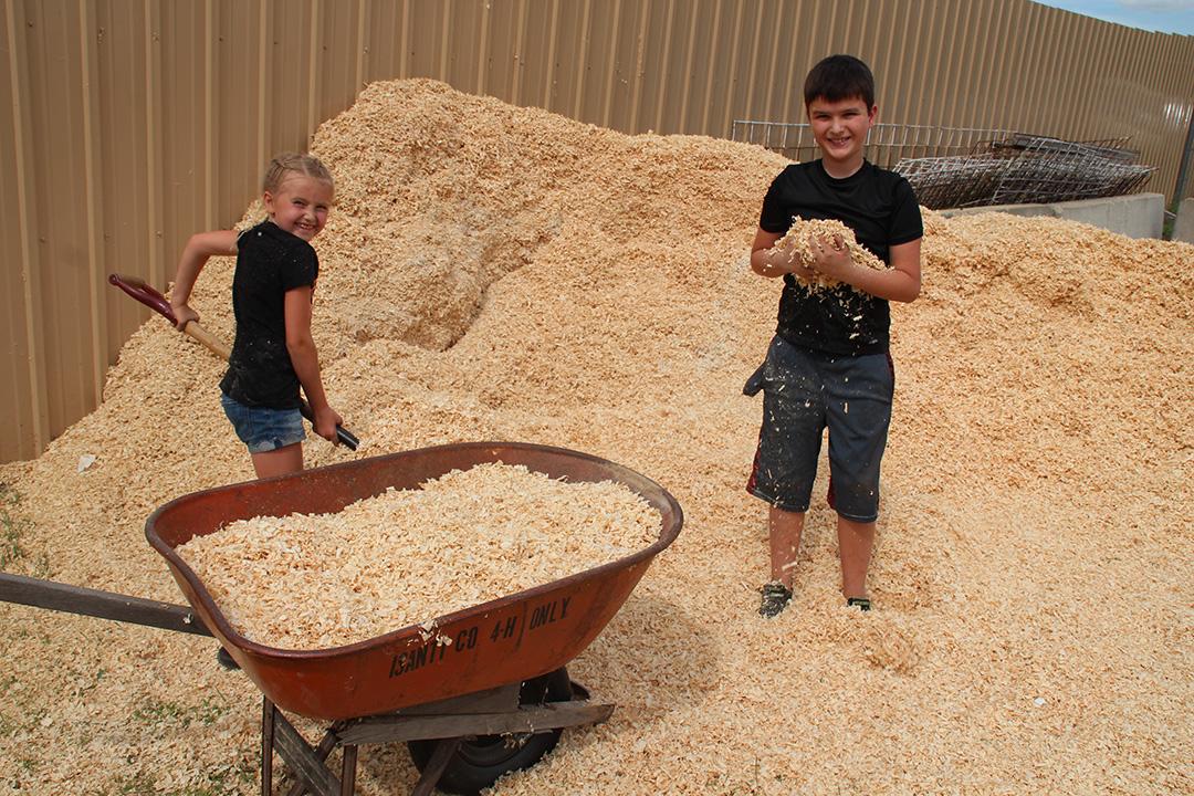 4h-kids-shoveling-sawdust